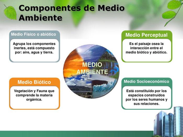 componentes-medio-ambiente
