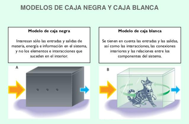 modelos-caja